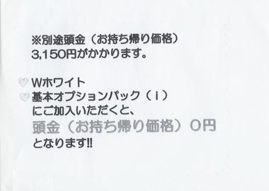 sb1.jpg